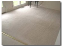 AFTER receiving the Blue Jay Carpet Cleaning Treatment | Carrollton, Texas