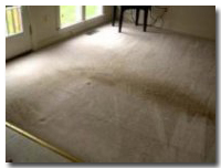 BEFORE receiving the Blue Jay Carpet Cleaning Treatment | Corinth, Texas